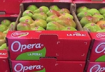 Consorzio Opera: bilancio dei primi 4 anni e considerazioni